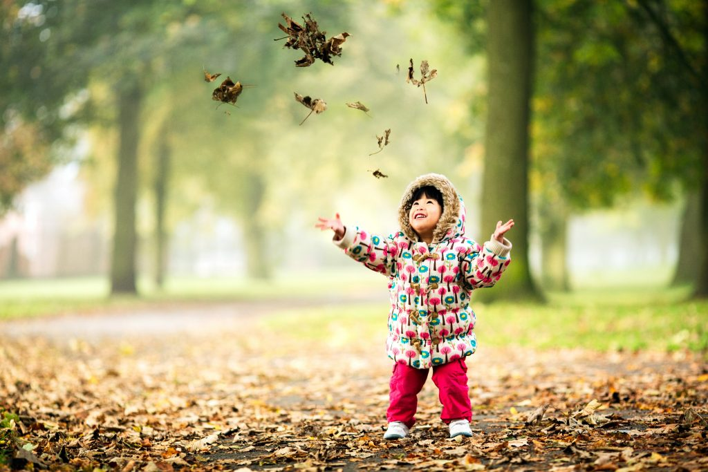 small girl, age three, throws autumn leaves in a Salford park